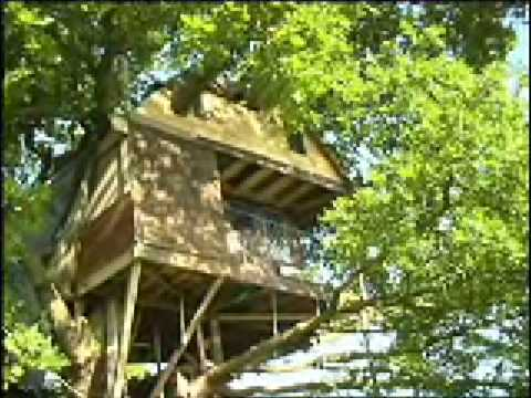 Tree House Tribute