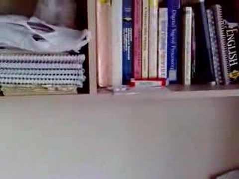 Sakhi Bhabona Kahare Bole - Rabindrasangeet video