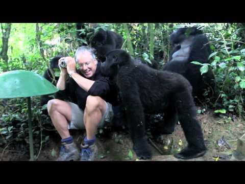 Slim mill gorilla