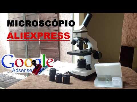 O que fiz com meu 1º Pagamento do Google Adsense? Um Microscópio