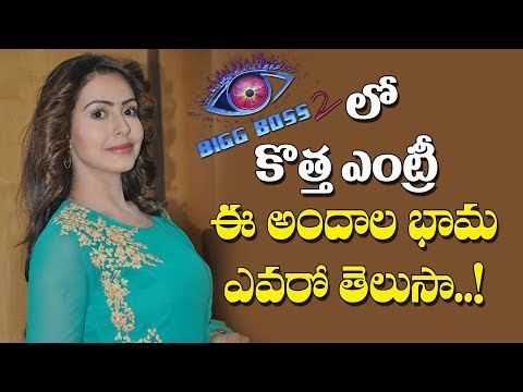 Big Boss 2 Telugu New Entry | Nandini Roy | Big boss 2 latest | Nani | Y5 tv |