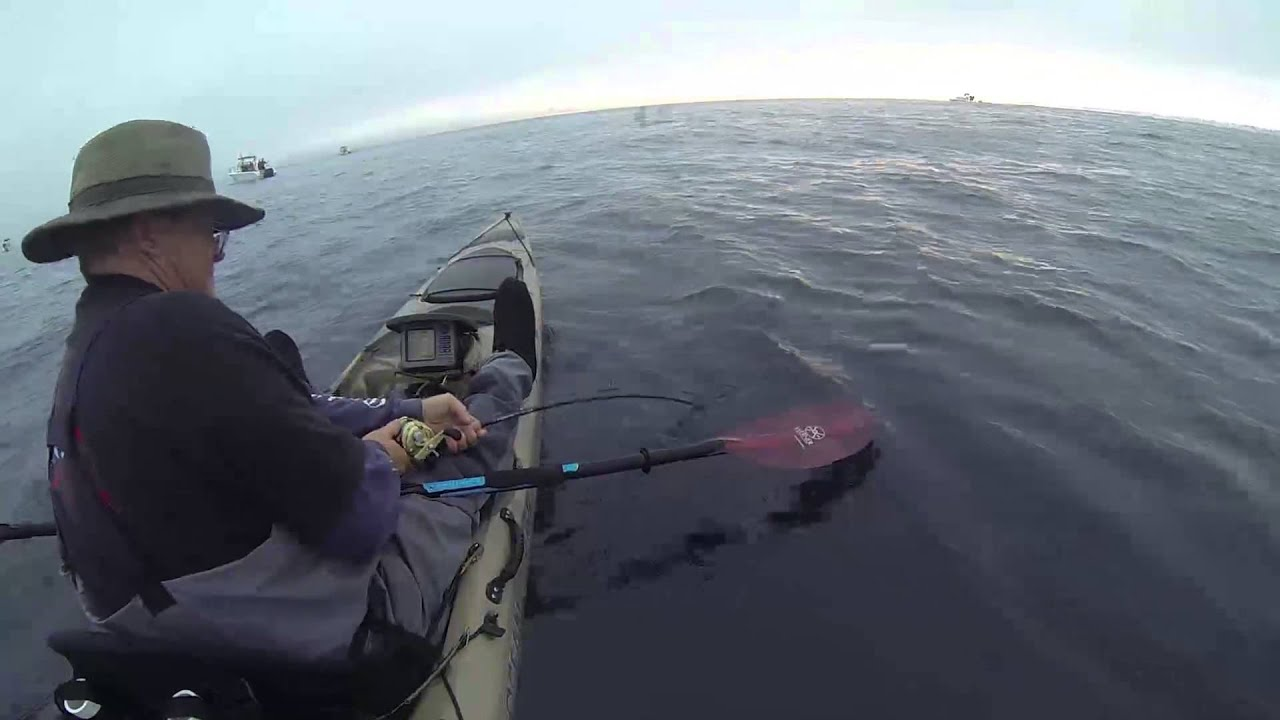 San diego kayak yellowtail youtube for Fishing license san diego