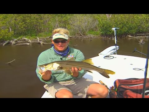 Addictive Fishing: Under The Weather - SNOOK in the mangroves