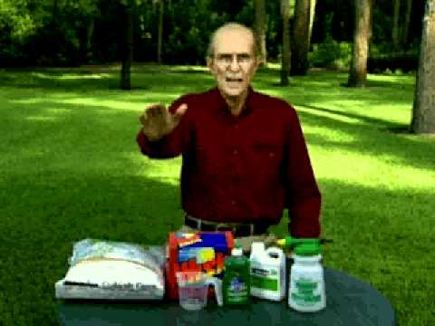 jerry baker 39 s year round lawn care spring crabgrass control youtube