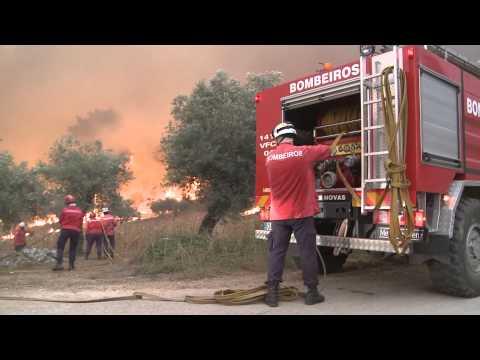 Pombal em Chamas   Foto Cardal   Imagem: Luis Figueiral