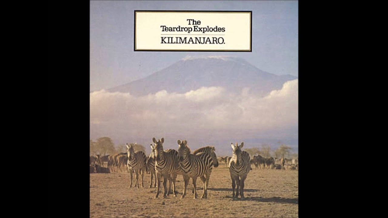 Teardrop Explodes, The - Bouncing Babies / All I Am Is Loving You