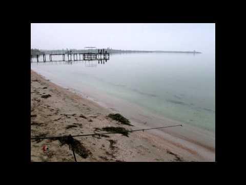 пгт черноморское крым рыбалка