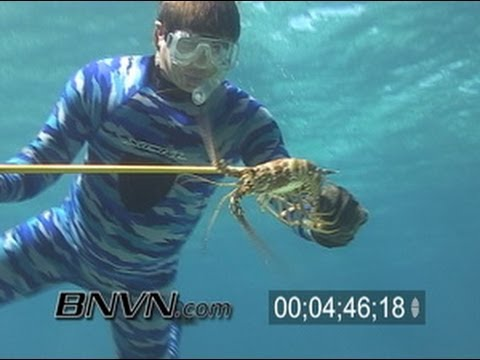 8/11/2005 Lobster Hunting, Tarpon, and Eagle Ray Video