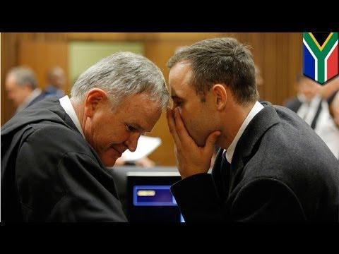 Oscar Pistorius trial: Defense advocate Roux grills former cop Schoombie van Rensburg
