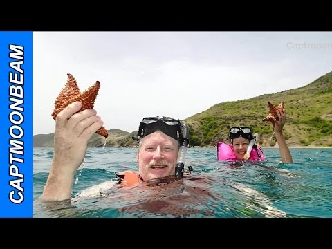 St Kitts Excursion: Snorkeling and Hiking Tour with Javin