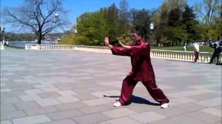Sifu Lan Tran - Stillness In Movement