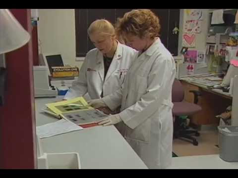 Breast Cancer and Diet Research