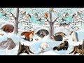 Как звери готовятся к зиме mp3