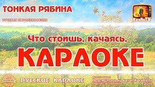 """Караоке - """"Тонкая рябина """" Русская Народная песня   Russian folk song KaraRuTv"""