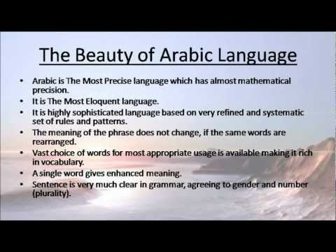 essay in arabic language