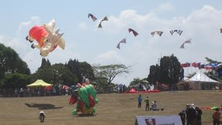 Festival Layang-layang Sedunia Pasir Gudang 2015 - Stunt Kites at 20th World Kite Festival