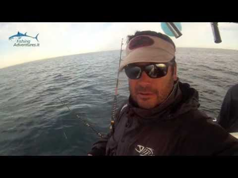 "Fishing Adventures ""Drifting al Tonno, innesco sardina"""