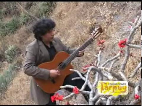 SAN GREGORIO-MUSICA ANDINA INSTRUMENTAL-GAVILAN