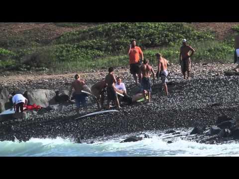 Shark Attack Maui