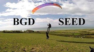 Test BGD Seed