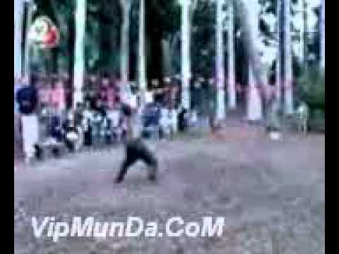 Tree catcher(vipmunda).3gp video