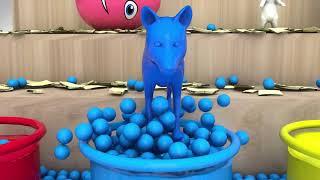 Learn Color Animal Bubble W Surprise Eggs Learn Cartoon Nursery Rhymes for Kids   YouTube