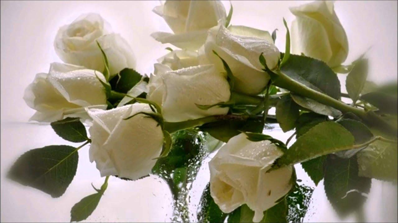 Как сделать чтобы долго стояли розы в домашних условиях