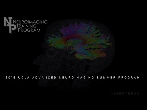 The UCLA Advanced Neuroimaging Summer program