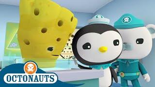 Octonauts - Healing the Sick   Cartoons for Kids   Underwater Sea Education