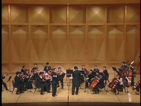 A Dentist Played Mendelssohn Violin Concerto in D minor mov...