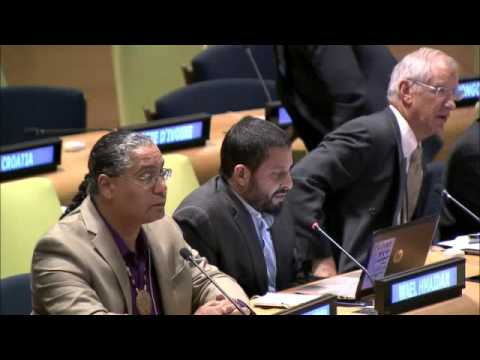 Mr. Wael Hmaidan - Climate Action Network International - UN Sustainable Development Summit