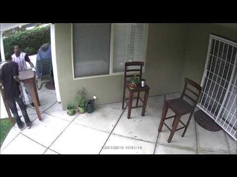 Burglars Caught on Camera   NR15076lp