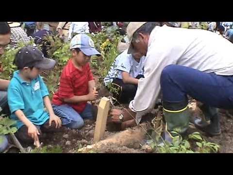 朝里ダム湖畔で植樹祭 千年の森プロジェクト