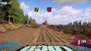 DiRT Rally 2.0_Daily race PORSCHE GT3 USA
