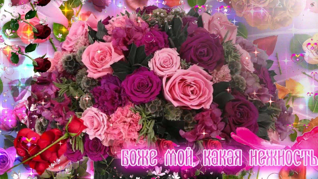 Розы для тебя подарок самые красивые цветы 70