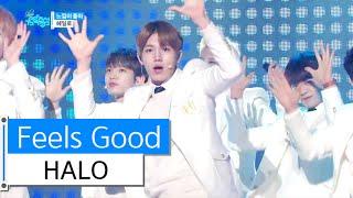 Watch Halo Feel So Good video