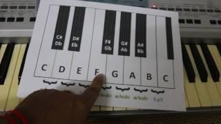Lesson 5 Study Organ Khmer