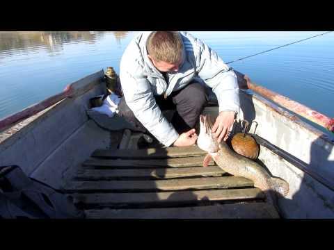 рыболовный на чернореченской