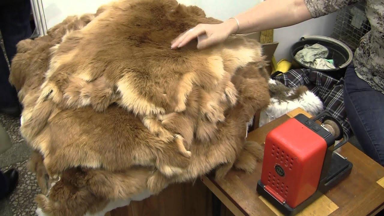 Выделка шкурок кролика в домашних условиях 92