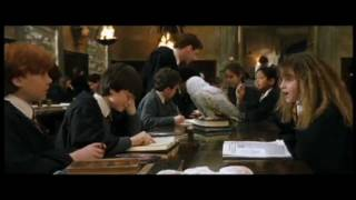 Best Ron And Hermione Scenes 1-7 Part 1