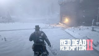 Red Dead Redemption 2 - Annoying Feminist gets Beat Up