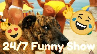 🤣 24/7 FUNNY FAILS MOMENTS - 24/7 TRY NOT TO LAUGH CHALLANGE! - Laugh Till You Drop!!! 😂