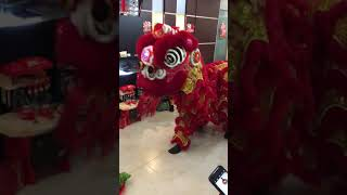 Chinese New Year Lion Dance at Home
