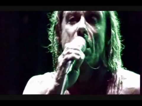 Iggy Pop - Whatever (Featuring The Trolls)