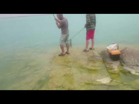 по дороге на рыбалку яшка