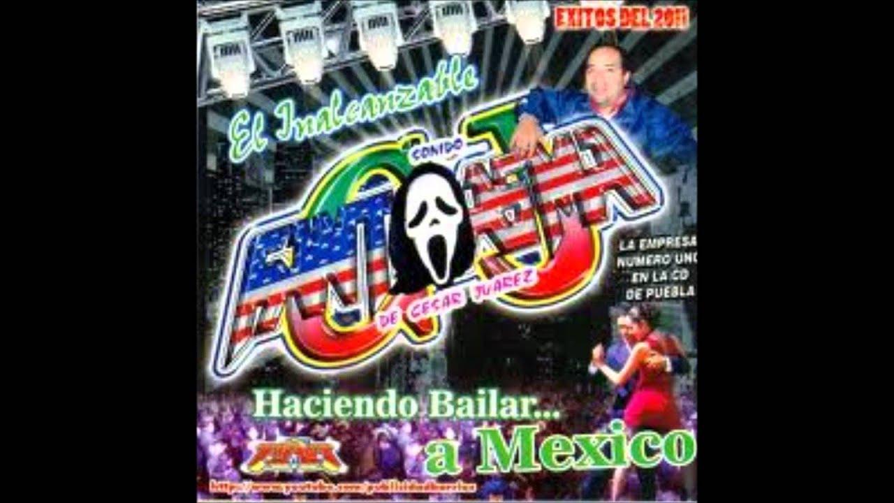 Sonido Fantasma de Puebla Sonido Fantasma Gritaria en
