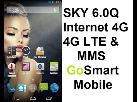 GoSmart Mobile 3G 4G APN Settings for Sky 6.0Q and Other Models