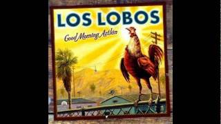 Watch Los Lobos Tony & Maria video
