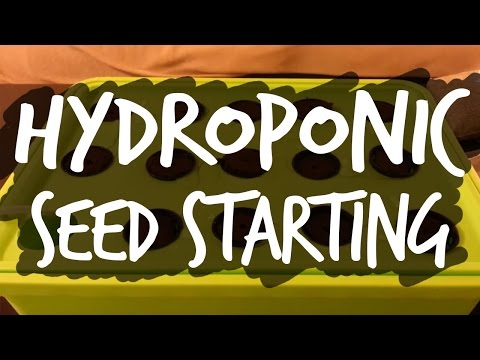 Easy Seed Starting For Hydroponics  By Epic Gardening