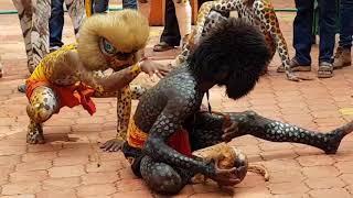 Tiger dance | Pili Nalike Malpe | Pili Vesha | Amazing | Super | Performance 2017